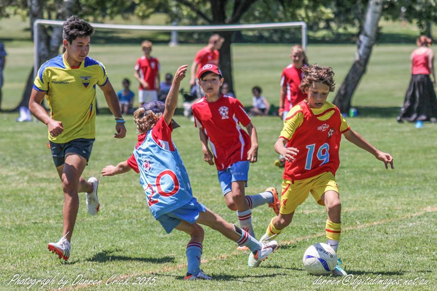 Woden Soccer Club - image 2